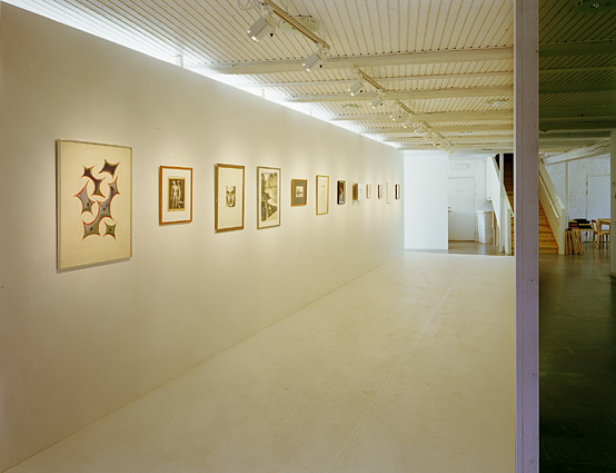 My Man Rays installation view